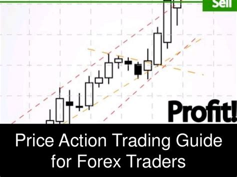 indian trade price guide price guide for forex traders