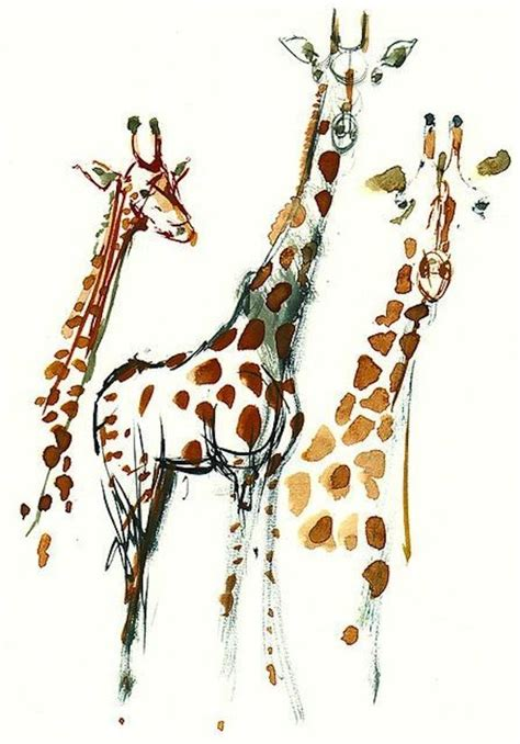 giraffe design journal 140 best images about sketch draw illustrate journal on