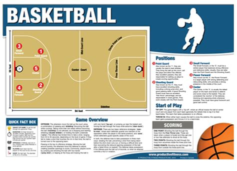 basketball number diagram basketball and their roles search