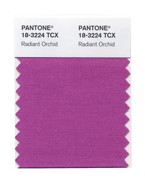 pantone s pantone s colour of the year 2014 is a rosy pink digital