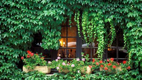 imagenes de jardines en ventanas un nuevo fondo de escritorio de jardines fondos de paisajes