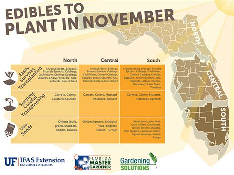 Florida Vegetable Gardening Calendar Edibles To Plant This Month Gardening Solutions