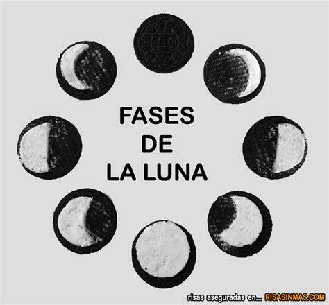 fases de la luna fases de la luna humor e im 225 genes divertidas