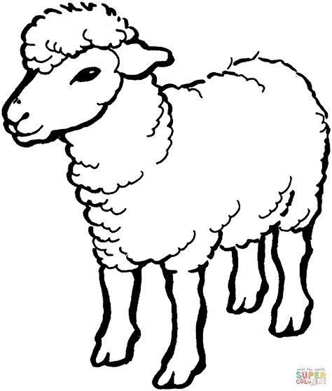 black sheep coloring pages coloring pages for free sheep coloring page free printable coloring pages