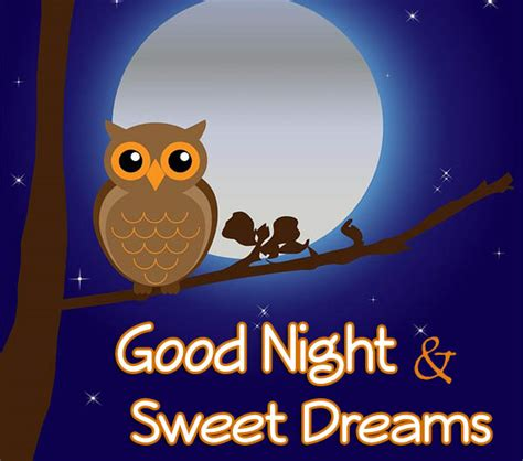 imagenes de good night and sweet dreams 32 make you sleep soundly good night quotes