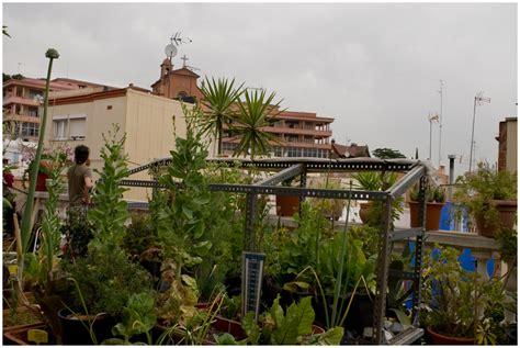 imagenes de jardines urbanos 1 huertos urbanos cultivando barcelona huertos urbanos