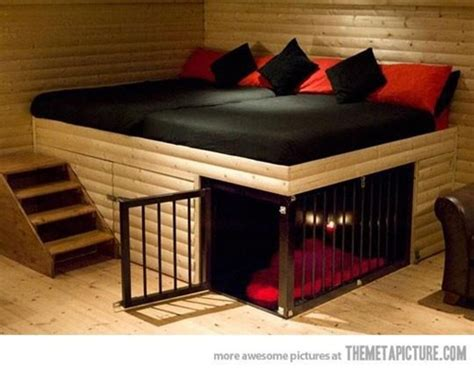 any dogs in the house 25 dog house ideas for your loving pet