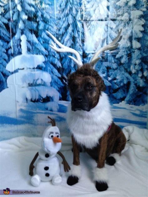 frozen dog wallpaper painting halloween costume images hot girls wallpaper