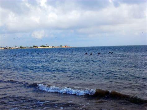 imagenes de punto fijo venezuela playa de punto fijo