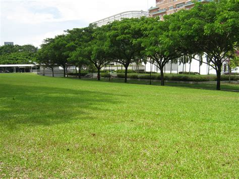 open space file dhoby ghaut open space 1 jpg