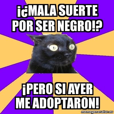 Anxiety Cat Meme Generator - meme anxiety cat 161 191 mala suerte por ser negro 161 pero si