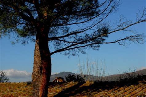 parco fiorito cortona agriturismo relais parco fiorito cortona arezzo tuscany