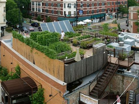 Farm To Table Restaurants Nyc by Rooftop Farming Is Getting The Ground Bay Area Bites