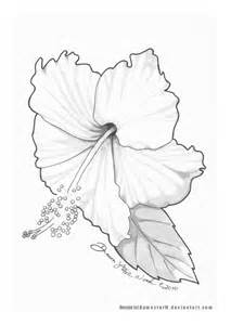 Hibiscus Flower Drawing Tattoo Sketch Coloring Page sketch template