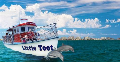 toot dolphin adventures clearwater
