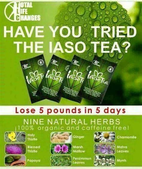 Lose 5 Pounds In A Day Detox by 101 Best Iaso Quot Weight Loss Detox Quot Tea Team Tlc Images On