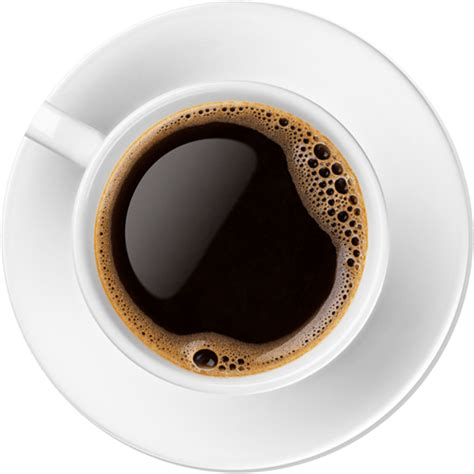 top of coffee cup design websites ppc seo social media marketing for firms