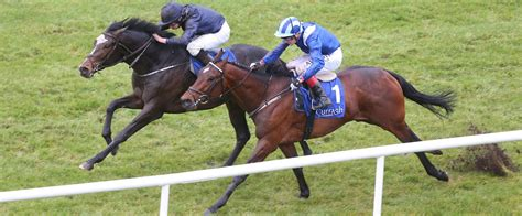 chester vase racing preview us army ranger odds