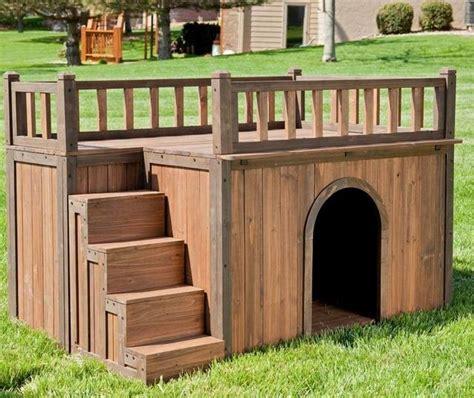 home for dogs dise 241 os de casas para perros