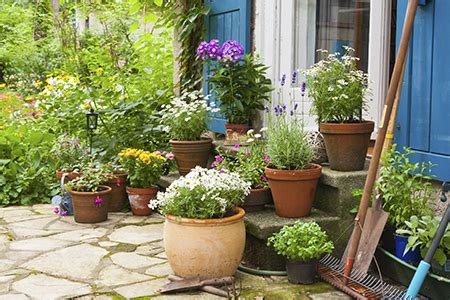 Patio Pots With Plants How To Create A Patio Dobbies Garden Centres