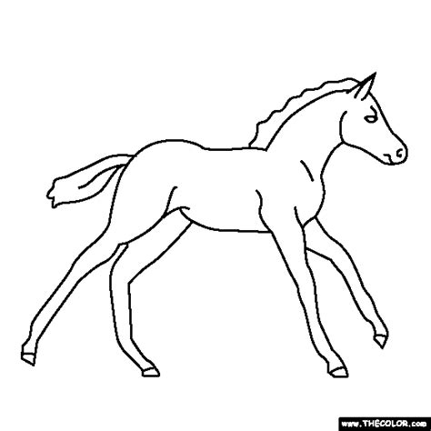 pictures of horses to color baby coloring page pony coloring clip