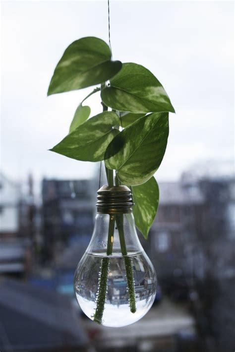 Light Bulb Planter Diy by Garden Decorations Light Bulb Planter Trusper