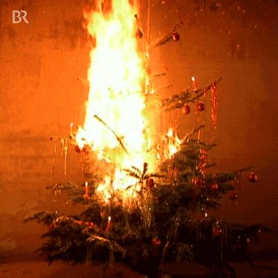 burning christmas tree gifs find share  giphy