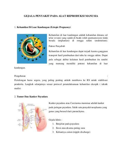 Buku Kehamilan Ektopik Di Luar Kandungan 1 gejala penyakit pada alat reproduksi manusia