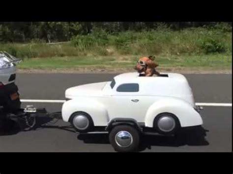 Motorrad Fahren Mit Hund by Hunde Auf Dem Motorrad