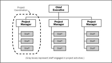 project management diagram types organization types with respect to project management