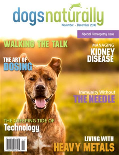 dogs naturally magazine dogs naturally magazine dogs naturally magazine