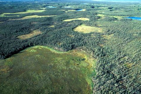 view image file aerial view of national park forest jpg wikimedia