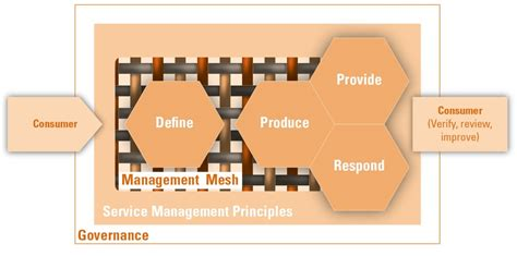 verism a service management approach for the digital age books boek handboek managementmodellen