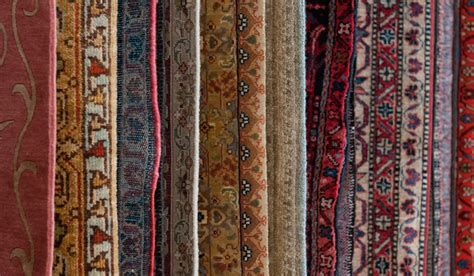 area rugs halifax home decorators collection halifax
