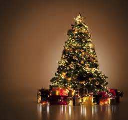cu 225 l es el significado de los 193 rboles de navidad