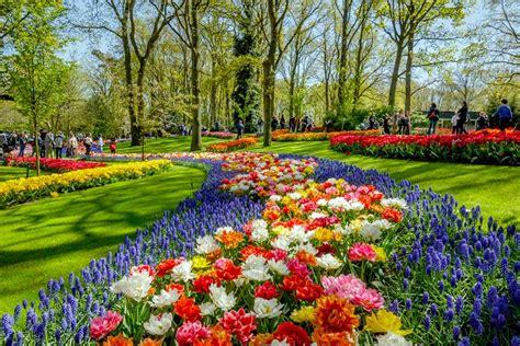 imagenes de jardines tematicos keukenhof el jard 237 n m 225 s colorido de europa en primavera