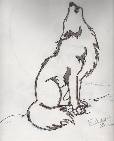 wolves drawings wolf drawings