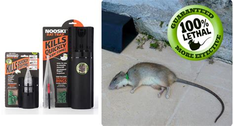 do bed bug traps work ant infestation in home uk how does nooski rat trap work signs of bed bugs pictures