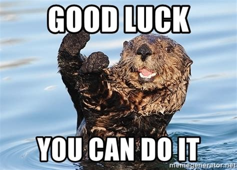 Goodluck Meme - good luck you can do it you can do it otter meme generator