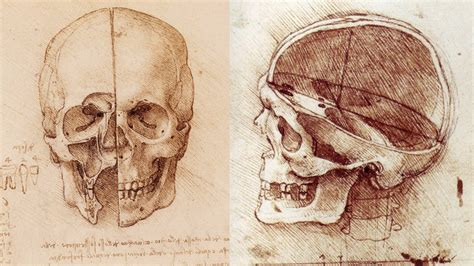 Drawing Anatomy by Workshop This Month Anatomy Drawing Class At
