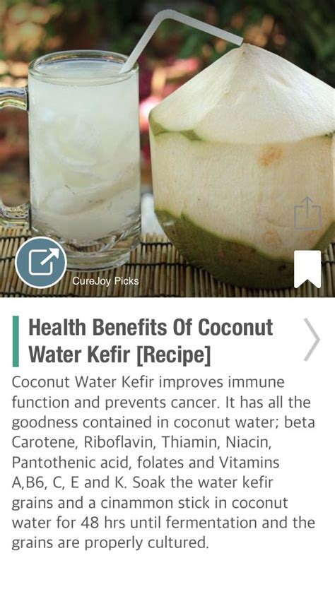 Coconut Water Detox Benefits by 139 Best Images About Ferment On Culture