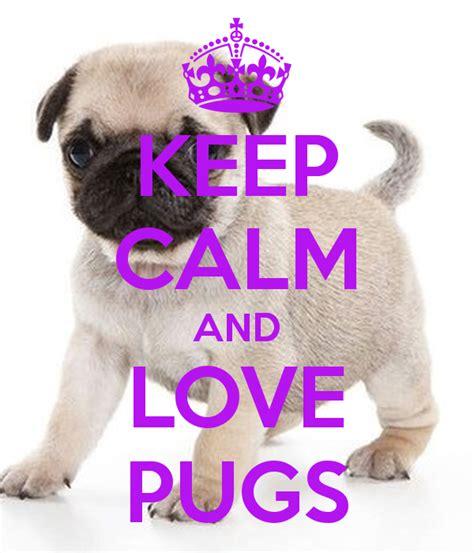 loving pug keep calm and pug quotes