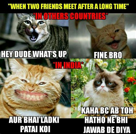 Bc Memes - latest collection of bakchod billi memes trolls and funny