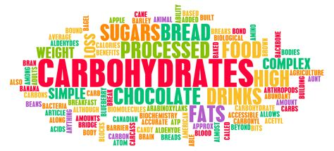 carbohydrate or carbohydrates the big debate about carbohydrates