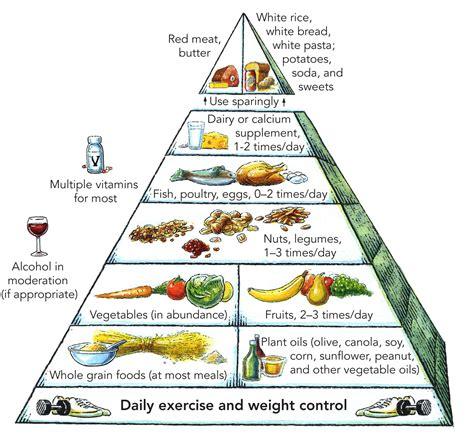 Better Food Pyramid Harvard