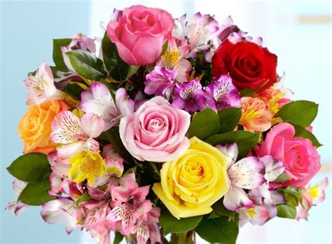 best graduation flower types proflowers blog