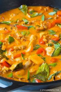 thai panang curry recipe vegetarian the best thai panang chicken curry a spicy perspective