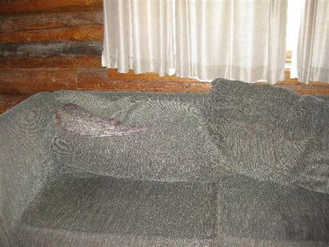 torn sofa run don t stay here chico hot springs resort pictures
