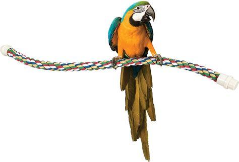 booda large comfy bird perch 36 in chewy com