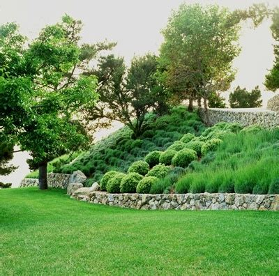 landscaping a hill landscape on a hill for the garden pinterest